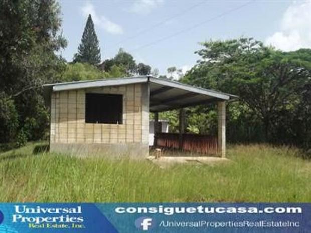 Bo cialitos for Casas con piscina para alquilar en puerto rico