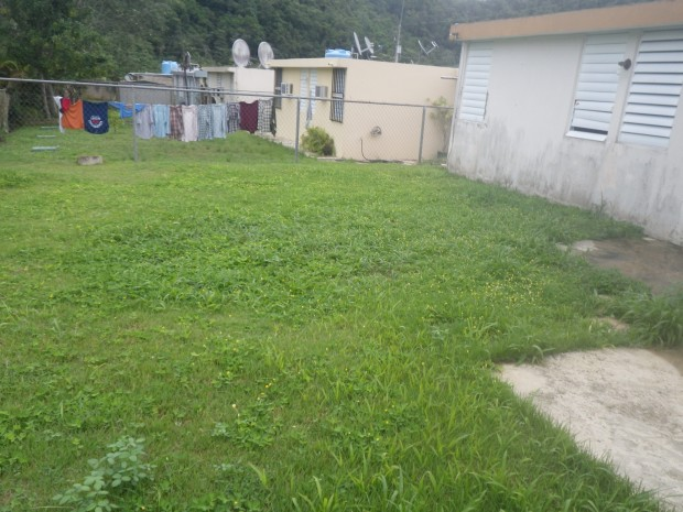 Jardines de florida for Florida v jardines