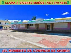casas en venta o alquiler en Las Marías