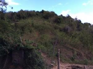 casas en venta o alquiler en Coamo